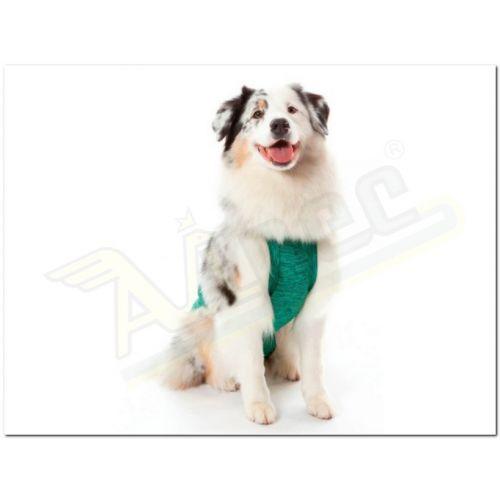 Imagem do produto PET MED - RPC DUO DRY REGULAR - VERDE | 3